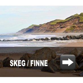 Skeg / finne