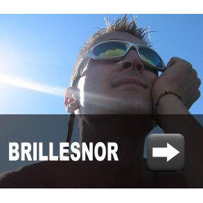 Brillesnor